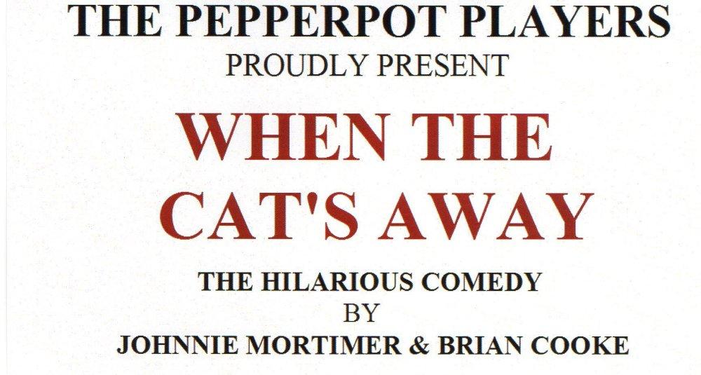 pepperpotcatsaway